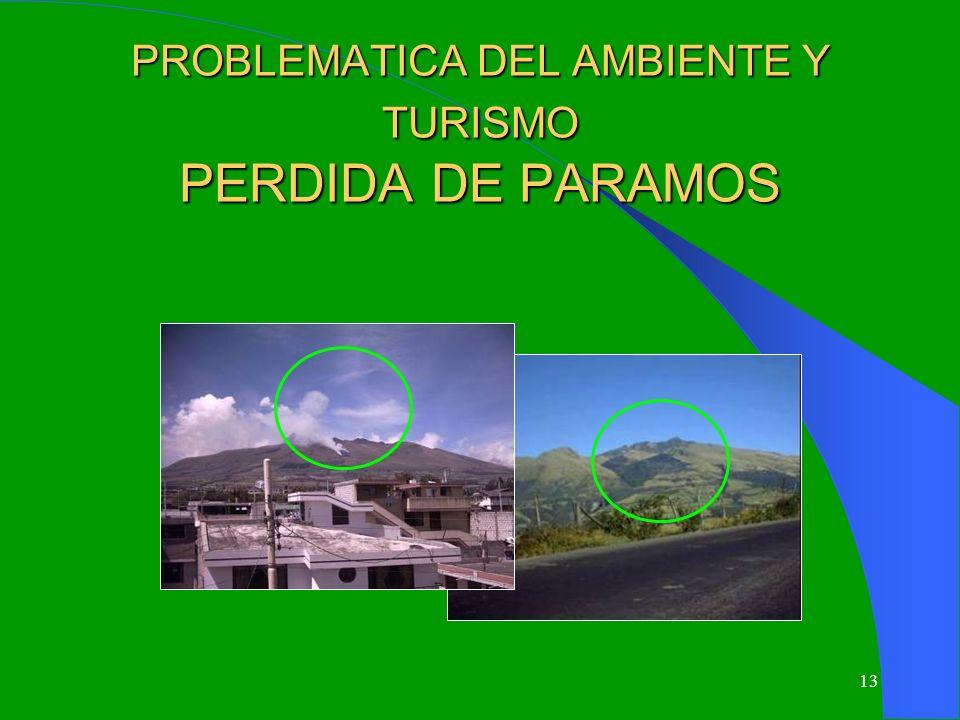 13 PROBLEMATICA DEL AMBIENTE Y TURISMO PERDIDA DE PARAMOS