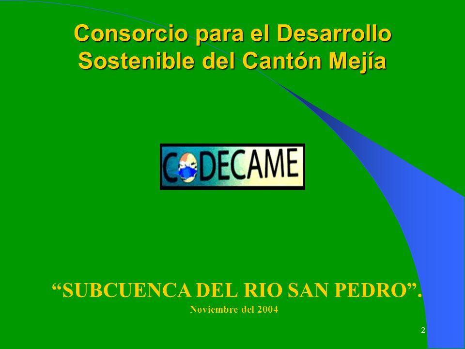 2 Consorcio para el Desarrollo Sostenible del Cantón Mejía SUBCUENCA DEL RIO SAN PEDRO. Noviembre del 2004