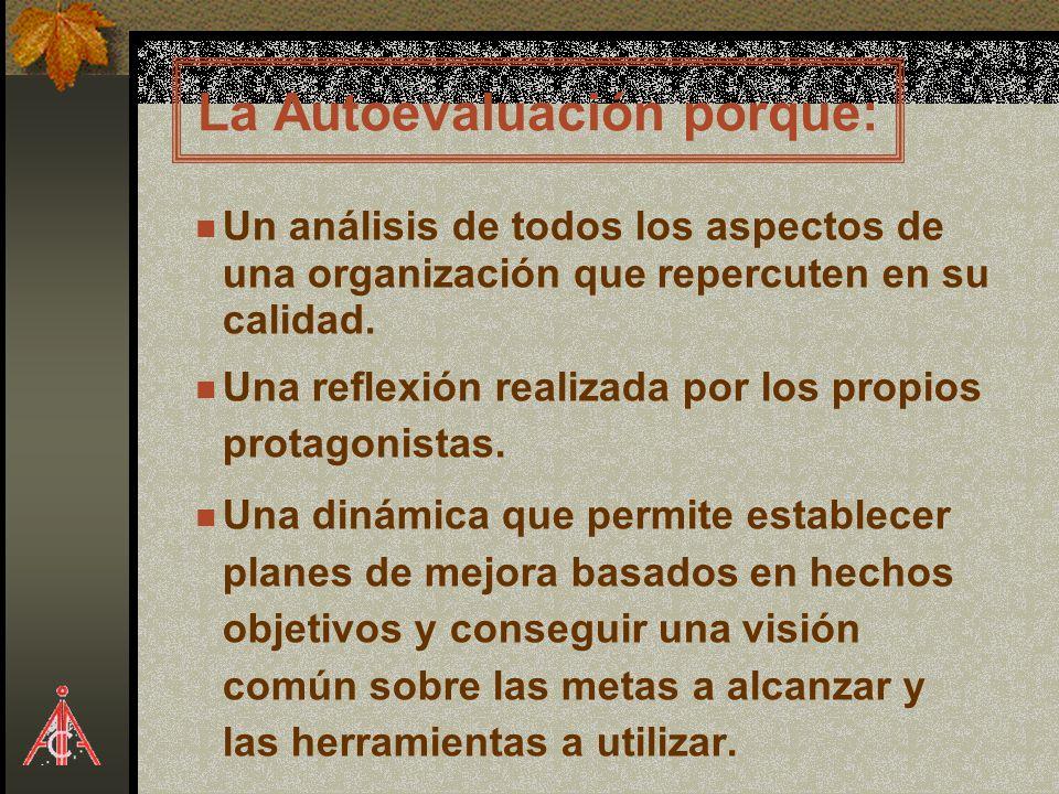 La Autoevaluación porque: Un análisis de todos los aspectos de una organización que repercuten en su calidad. Una reflexión realizada por los propios
