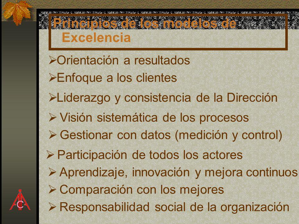 Principios de los modelos de Excelencia Enfoque a los clientes Liderazgo y consistencia de la Dirección Visión sistemática de los procesos Gestionar c