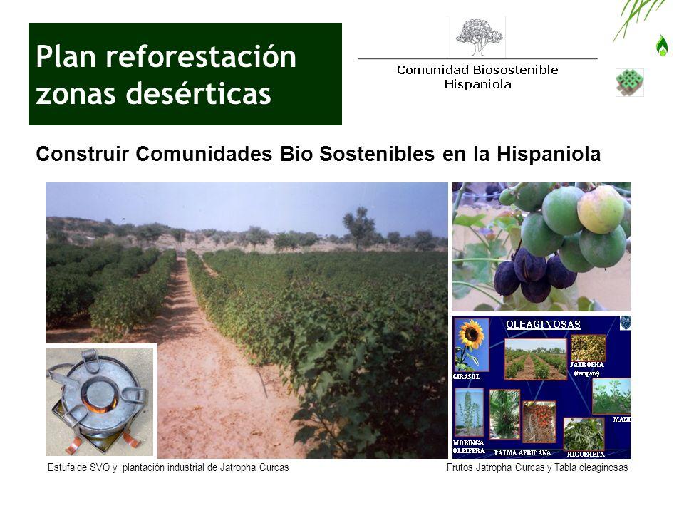 Plan reforestación zonas desérticas Construir Comunidades Bio Sostenibles en la Hispaniola Estufa de SVO y plantación industrial de Jatropha CurcasFru