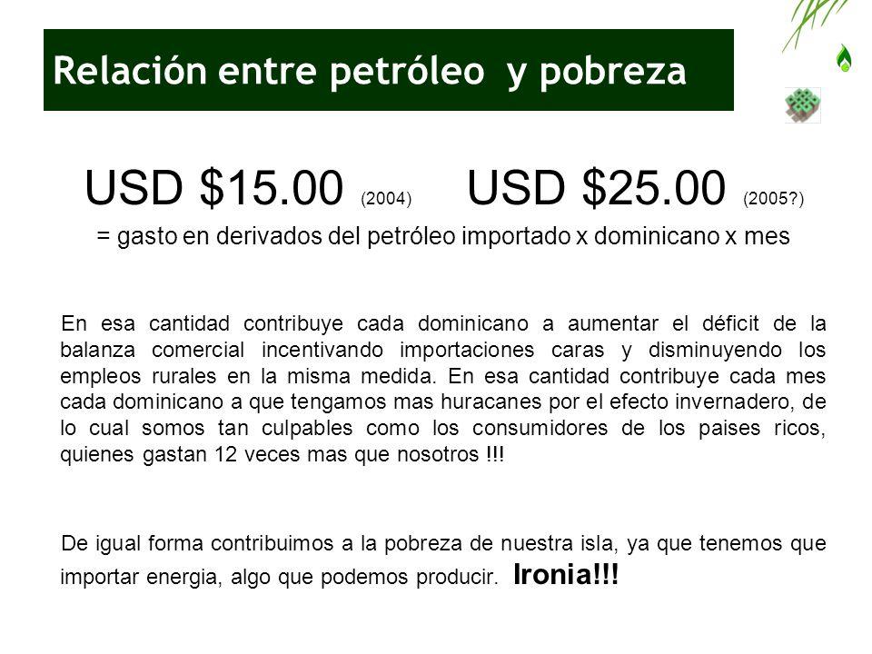 Relación entre petróleo y pobreza USD $15.00 (2004) USD $25.00 (2005?) = gasto en derivados del petróleo importado x dominicano x mes En esa cantidad