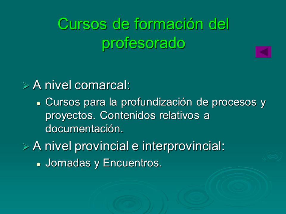 Cursos de formación del profesorado A nivel comarcal: A nivel comarcal: Cursos para la profundización de procesos y proyectos. Contenidos relativos a