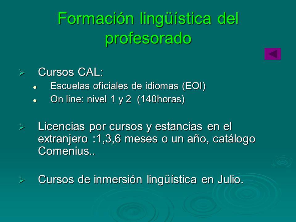 Formación lingüística del profesorado Cursos CAL: Cursos CAL: Escuelas oficiales de idiomas (EOI) Escuelas oficiales de idiomas (EOI) On line: nivel 1