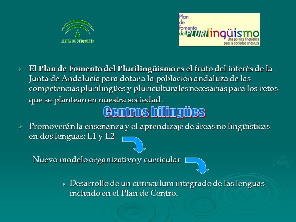 El Plan de Fomento del Plurilingüismo es el fruto del interés de la Junta de Andalucía para dotar a la población andaluza de las competencias plurilin