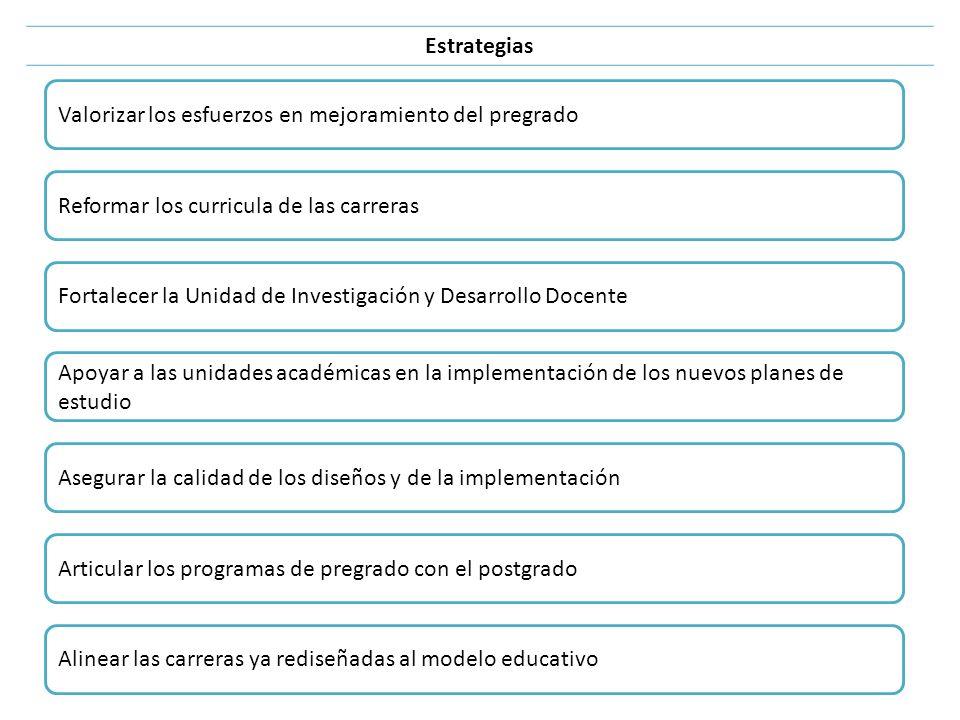 Estrategias Valorizar los esfuerzos en mejoramiento del pregrado Reformar los curricula de las carreras Fortalecer la Unidad de Investigación y Desarr