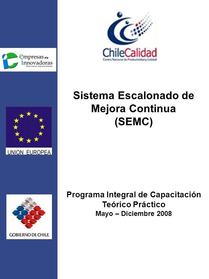 Sistema Escalonado de Mejora Continua (SEMC) Programa Integral de Capacitación Teórico Práctico Mayo – Diciembre 2008