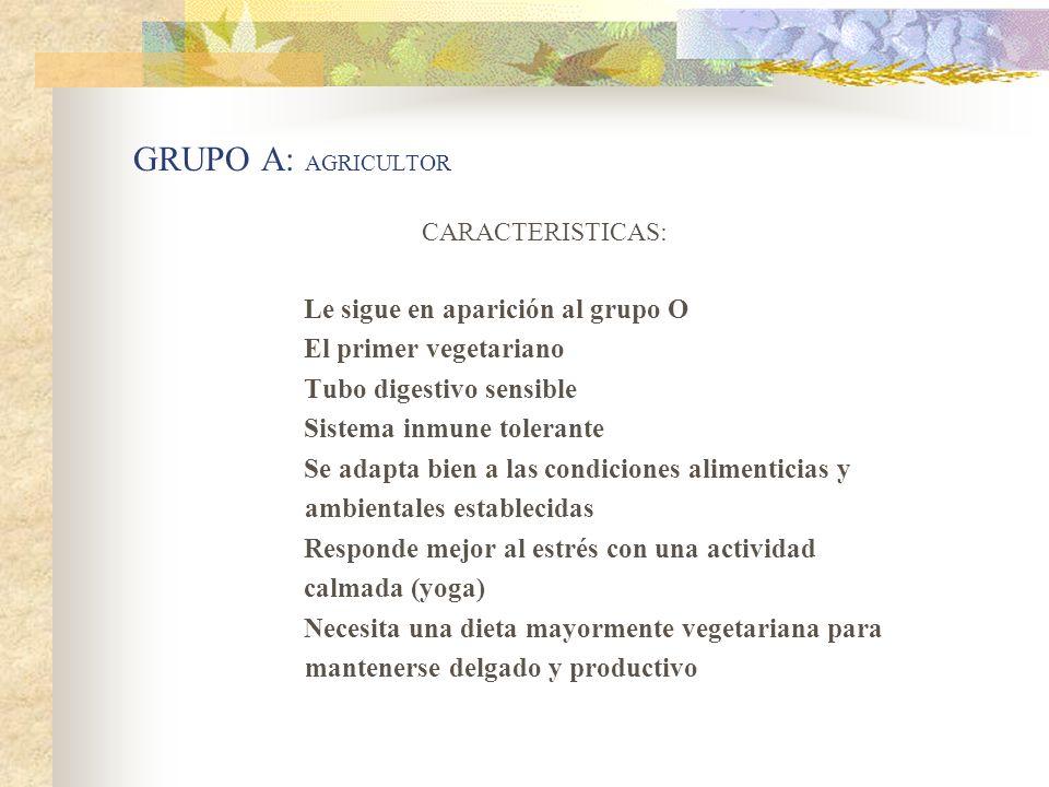 GRUPO A: AGRICULTOR CARACTERISTICAS: Le sigue en aparición al grupo O El primer vegetariano Tubo digestivo sensible Sistema inmune tolerante Se adapta