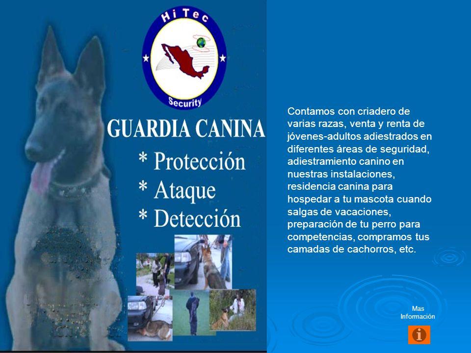 Protección Intramuros (a Empresas) Está enfocada a la salvaguarda y protección de personas y bienes materiales, se basa en el cumplimiento a las Polít