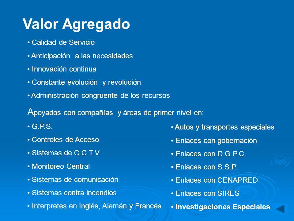 Telefonía Redes de cómputo LAN, WAN Multi enlaces Información impresa Patentes, fórmulas, inventos, etc. Sistemas de cómputo Intranet e Internet Nivel