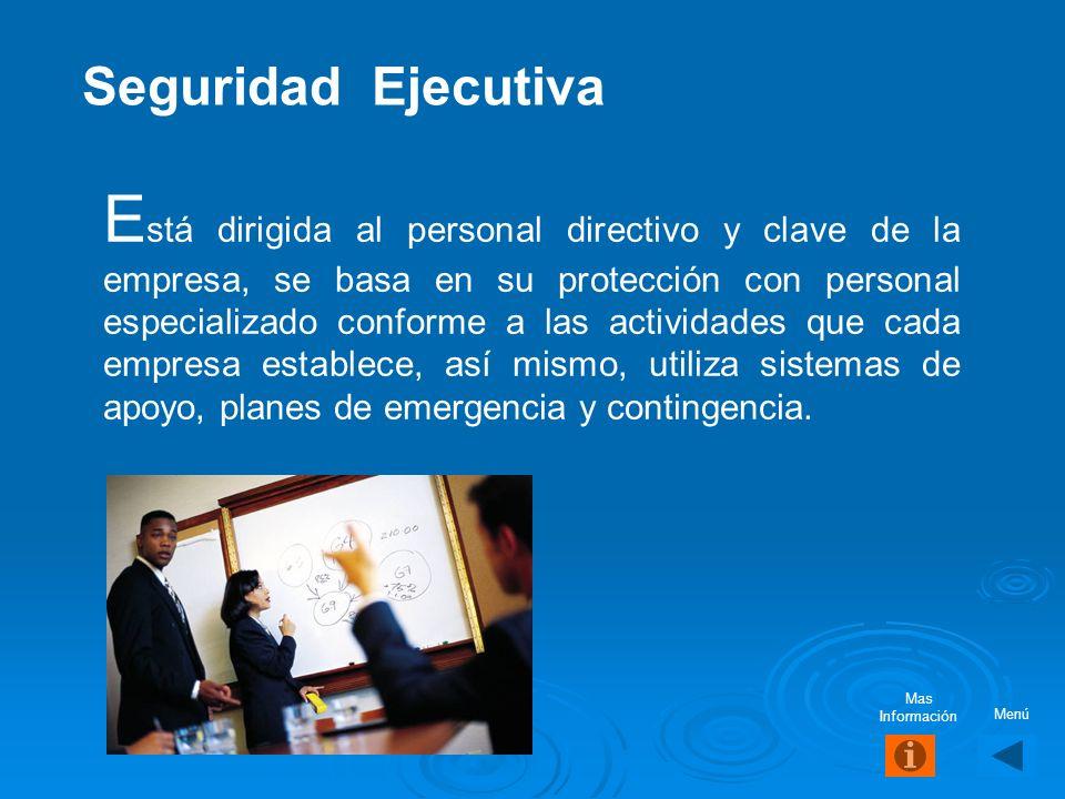 Desarrollo de cultura Análisis de políticas y procedimientos Desarrollo de B.C.P. Seguridad de la información Evaluación de presupuesto Priorización d