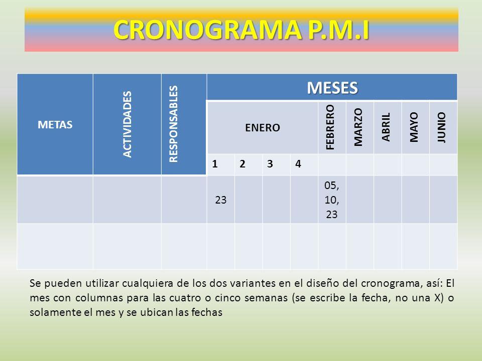 CRONOGRAMA P.M.I METAS ACTIVIDADES RESPONSABLESMESES ENERO FEBRERO MARZO ABRIL MAYO JUNIO 1234 23 05, 10, 23 Se pueden utilizar cualquiera de los dos
