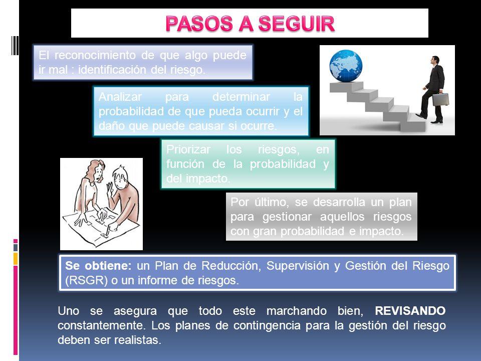 Se obtiene: un Plan de Reducción, Supervisión y Gestión del Riesgo (RSGR) o un informe de riesgos.