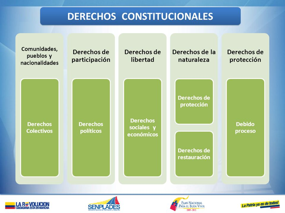 Comunidades, pueblos y nacionalidades Derechos Colectivos Derechos de participación Derechos políticos Derechos de libertad Derechos sociales y económ