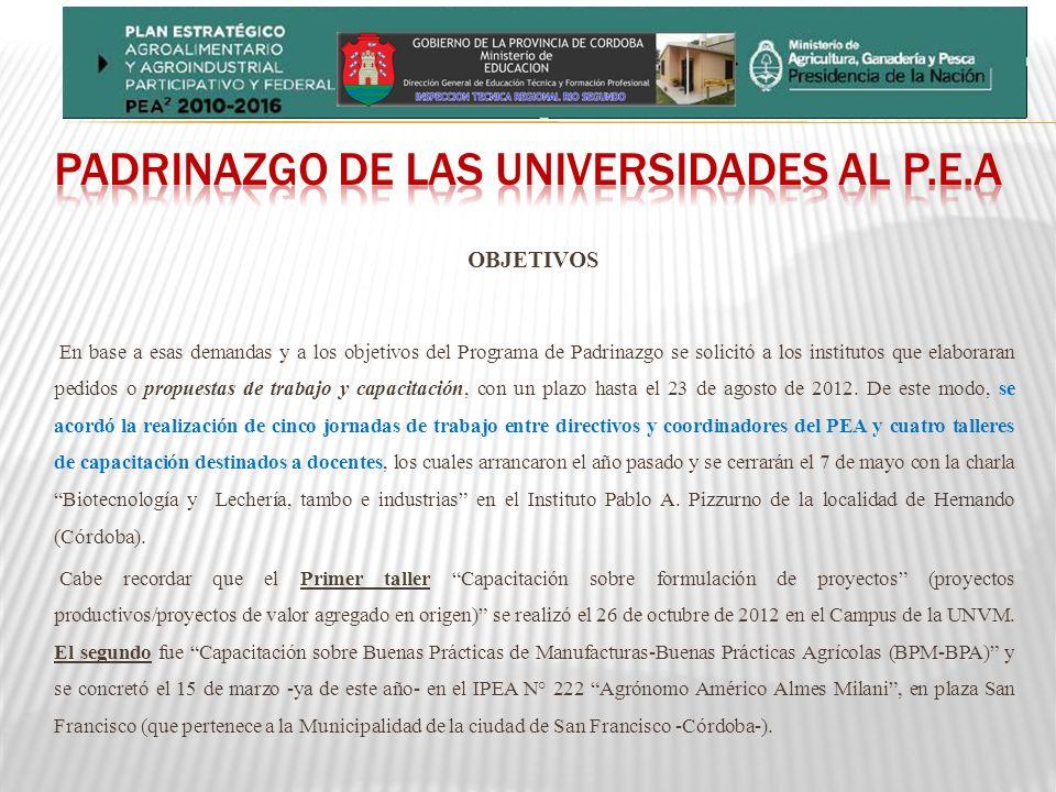 OBJETIVOS En base a esas demandas y a los objetivos del Programa de Padrinazgo se solicitó a los institutos que elaboraran pedidos o propuestas de trabajo y capacitación, con un plazo hasta el 23 de agosto de 2012.