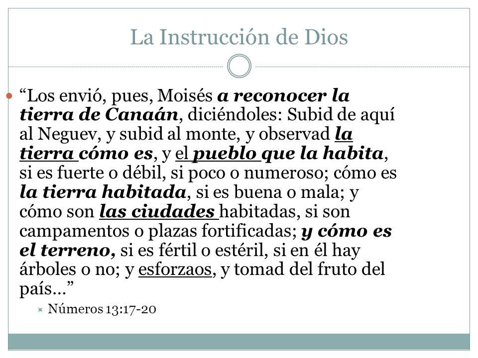 La Instrucción de Dios Los envió, pues, Moisés a reconocer la tierra de Canaán, diciéndoles: Subid de aquí al Neguev, y subid al monte, y observad la