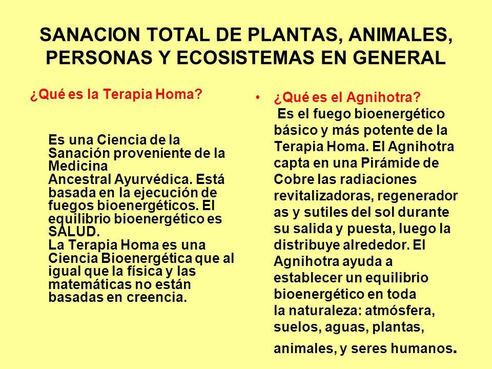 SANACION TOTAL DE PLANTAS, ANIMALES, PERSONAS Y ECOSISTEMAS EN GENERAL ¿Qué es la Terapia Homa? Es una Ciencia de la Sanación proveniente de la Medici