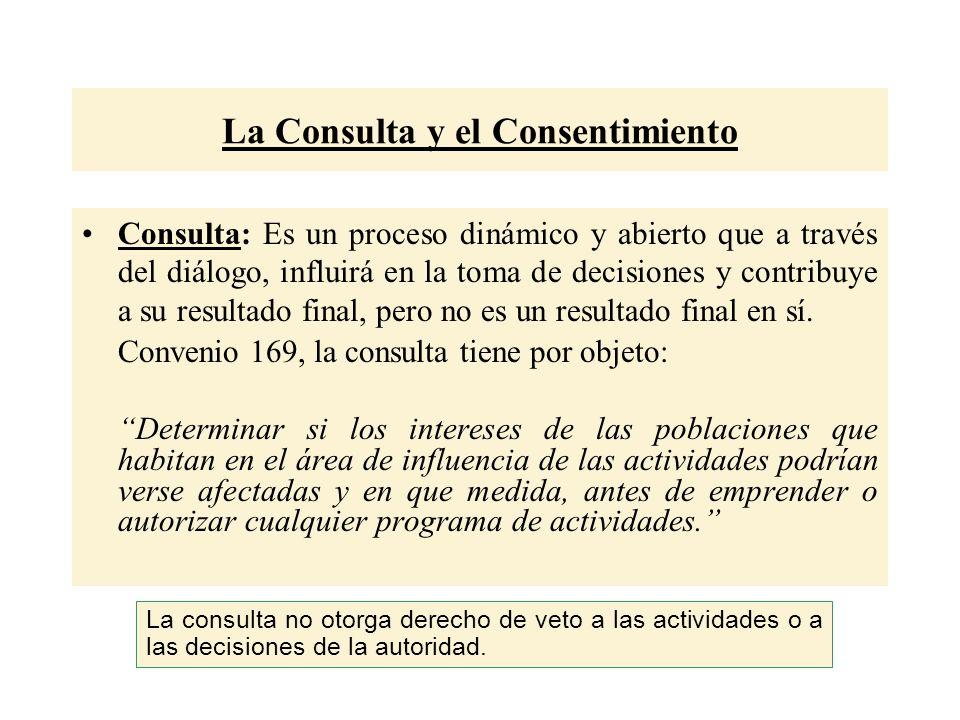 La Consulta y el Consentimiento Consulta: Es un proceso dinámico y abierto que a través del diálogo, influirá en la toma de decisiones y contribuye a su resultado final, pero no es un resultado final en sí.