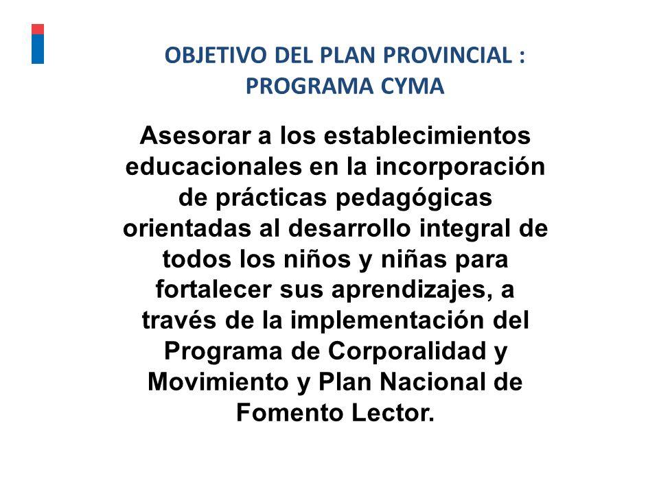 Década de los ochenta Década de los noventa Principios del 2000 OBJETIVO DEL PLAN PROVINCIAL : PROGRAMA CYMA Asesorar a los establecimientos educacion