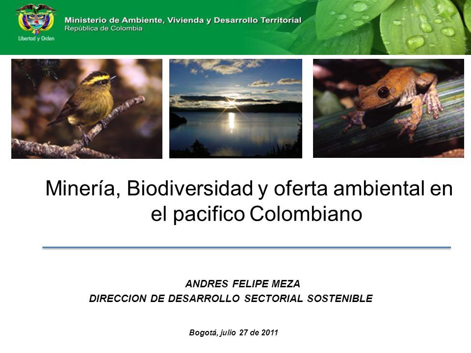 ANDRES FELIPE MEZA DIRECCION DE DESARROLLO SECTORIAL SOSTENIBLE Bogotá, julio 27 de 2011 Minería, Biodiversidad y oferta ambiental en el pacifico Colombiano