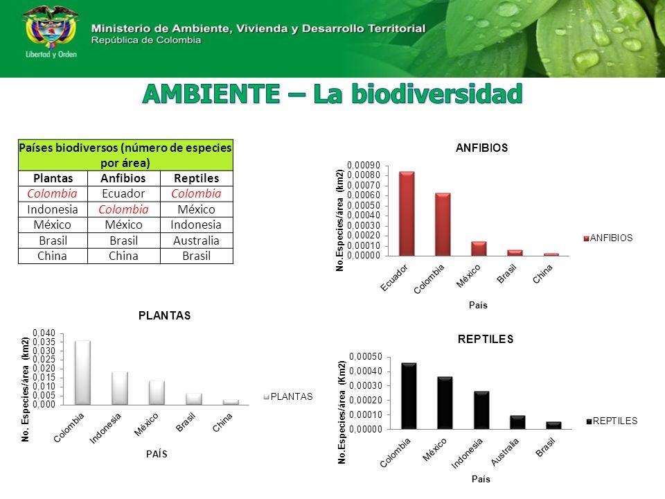 Países biodiversos (número de especies por área) PlantasAnfibiosReptiles ColombiaEcuadorColombia IndonesiaColombiaMéxico Indonesia Brasil Australia China Brasil