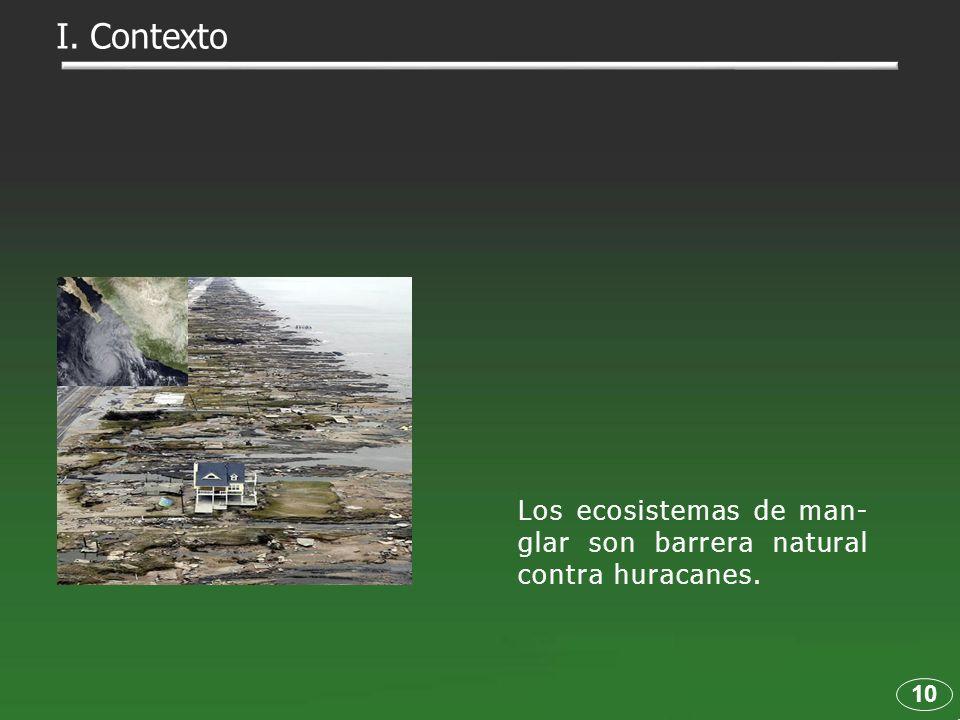 10 Los ecosistemas de man- glar son barrera natural contra huracanes. I. Contexto