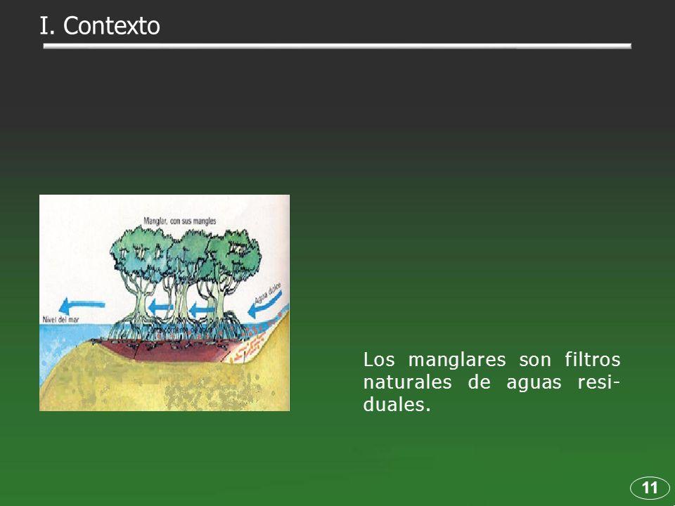 11 Los manglares son filtros naturales de aguas resi- duales. I. Contexto