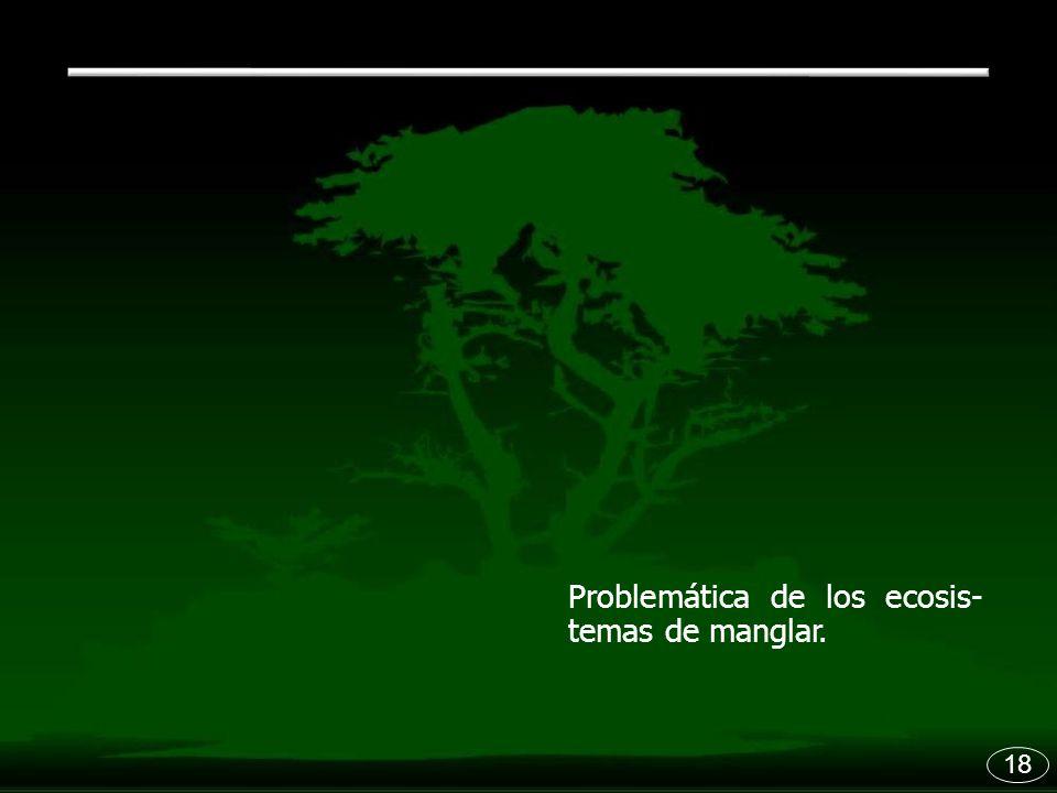 18 Problemática de los ecosis- temas de manglar.
