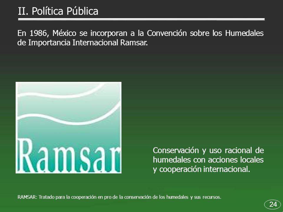 II. Política Pública 24 En 1986, México se incorporan a la Convención sobre los Humedales de Importancia Internacional Ramsar. Conservación y uso raci