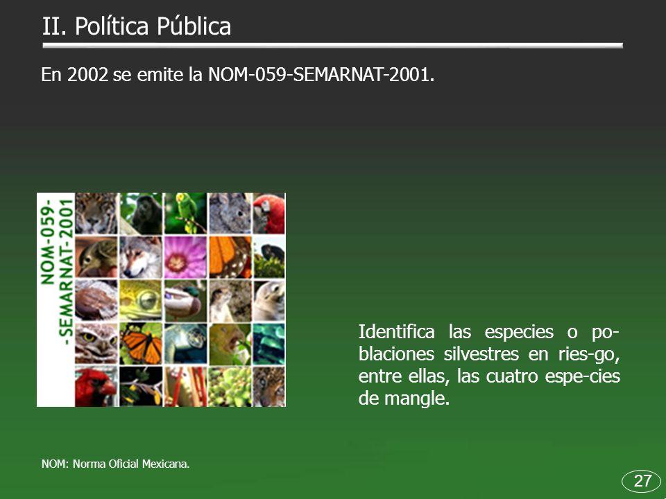 27 En 2002 se emite la NOM-059-SEMARNAT-2001. Identifica las especies o po- blaciones silvestres en ries-go, entre ellas, las cuatro espe-cies de mang