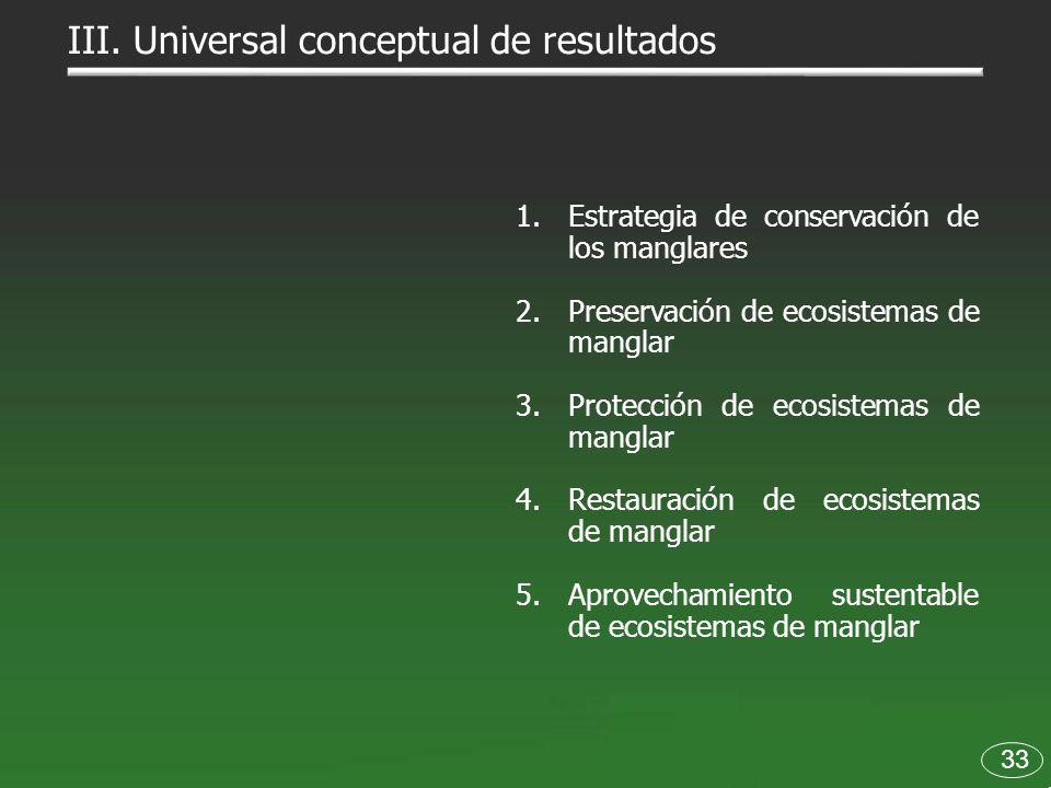 33 III. Universal conceptual de resultados 1.Estrategia de conservación de los manglares 2.Preservación de ecosistemas de manglar 3.Protección de ecos
