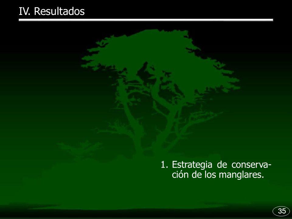 35 1.Estrategia de conserva- ción de los manglares. IV. Resultados