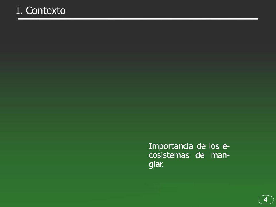 75 V.Dictamen La falta de una estrategia na- cional de conservación de eco- sistemas de manglar.