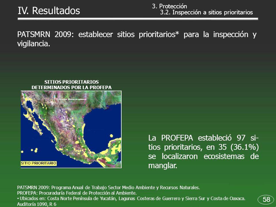 3.2. Inspección a sitios prioritarios PATSMRN 2009: Programa Anual de Trabajo Sector Medio Ambiente y Recursos Naturales. PROFEPA: Procuraduría Federa