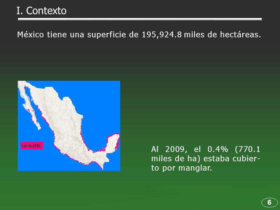 Al 2009, el 0.4% (770.1 miles de ha) estaba cubier- to por manglar. 6 I. Contexto México tiene una superficie de 195,924.8 miles de hectáreas.