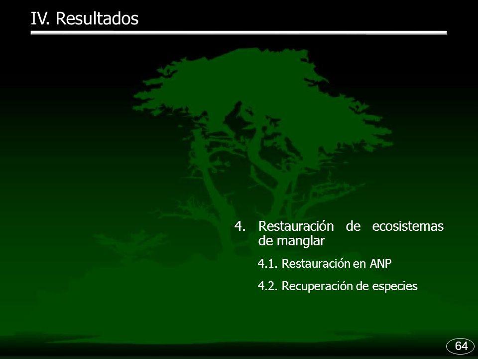 64 IV. Resultados 4.Restauración de ecosistemas de manglar 4.1. Restauración en ANP 4.2. Recuperación de especies