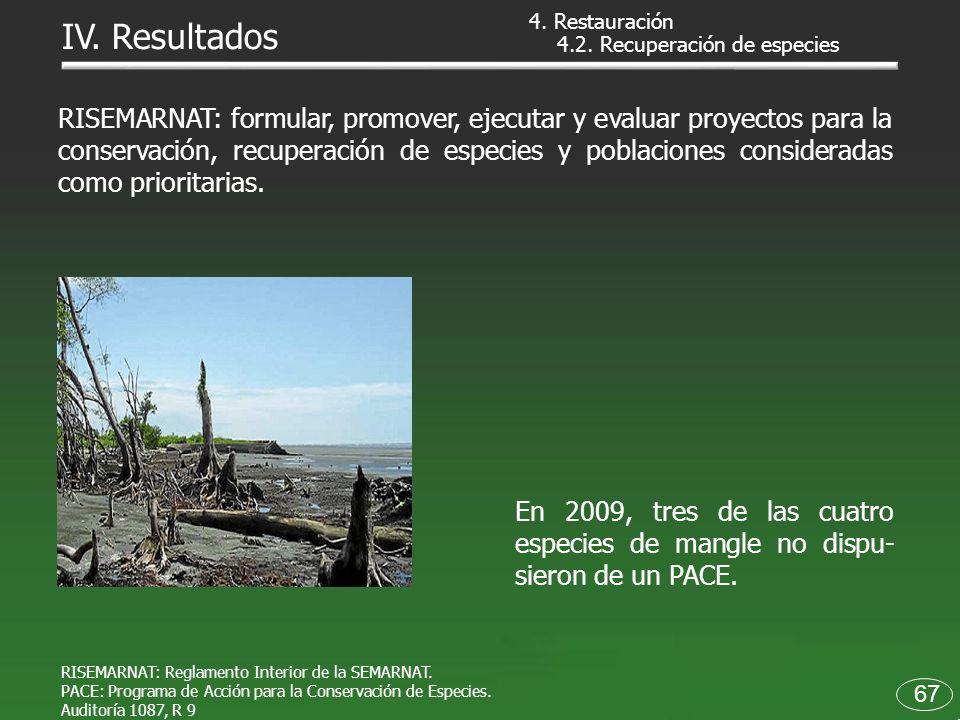 RISEMARNAT: Reglamento Interior de la SEMARNAT. PACE: Programa de Acción para la Conservación de Especies. Auditoría 1087, R 9 En 2009, tres de las cu