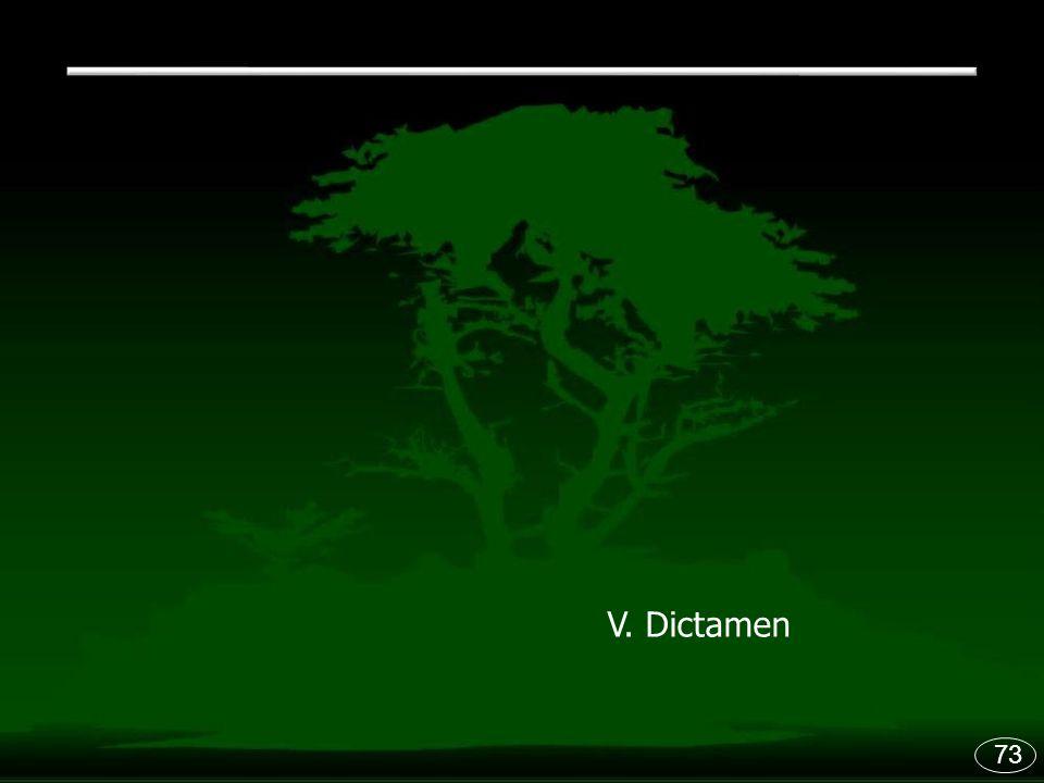 73 V. Dictamen