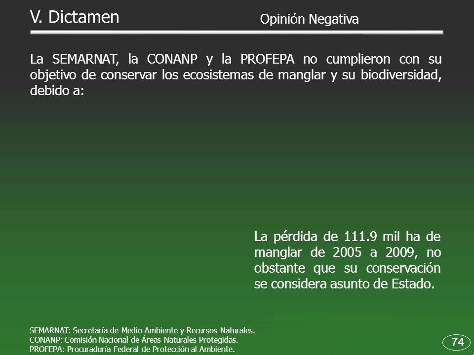 La pérdida de 111.9 mil ha de manglar de 2005 a 2009, no obstante que su conservación se considera asunto de Estado. 74 V. Dictamen Opinión Negativa L