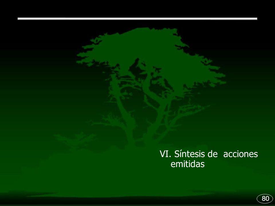 VI. Síntesis de acciones emitidas 80