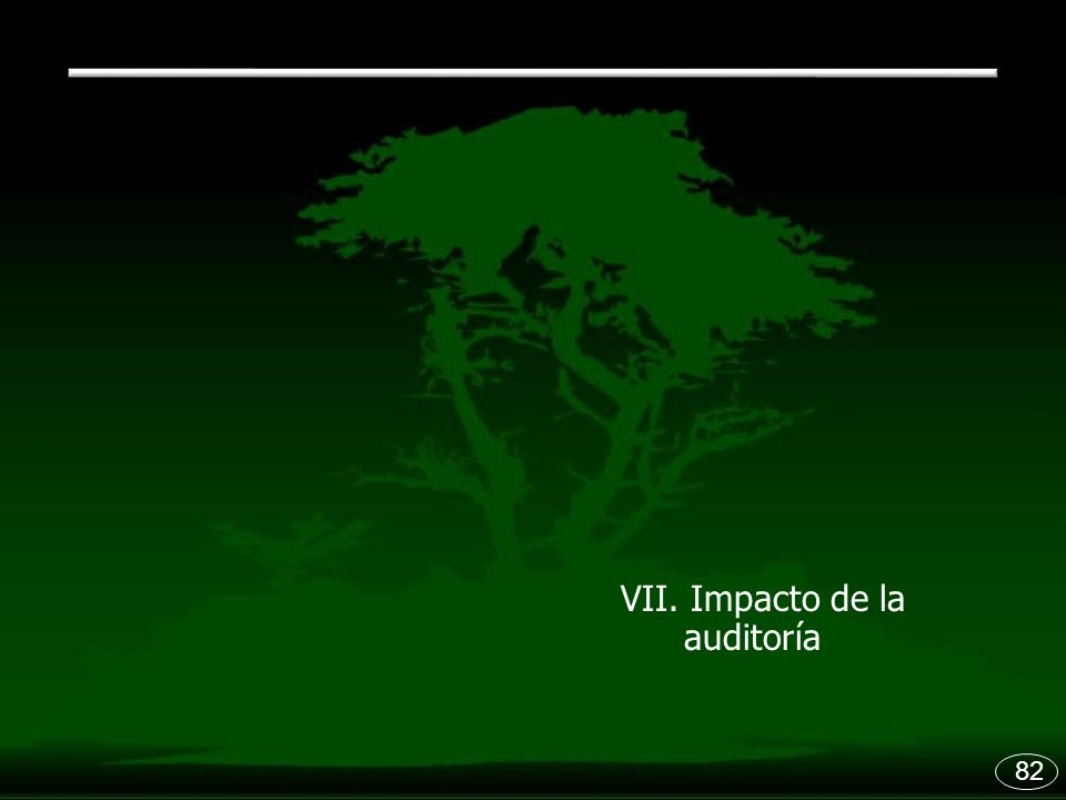 VII. Impacto de la auditoría 82