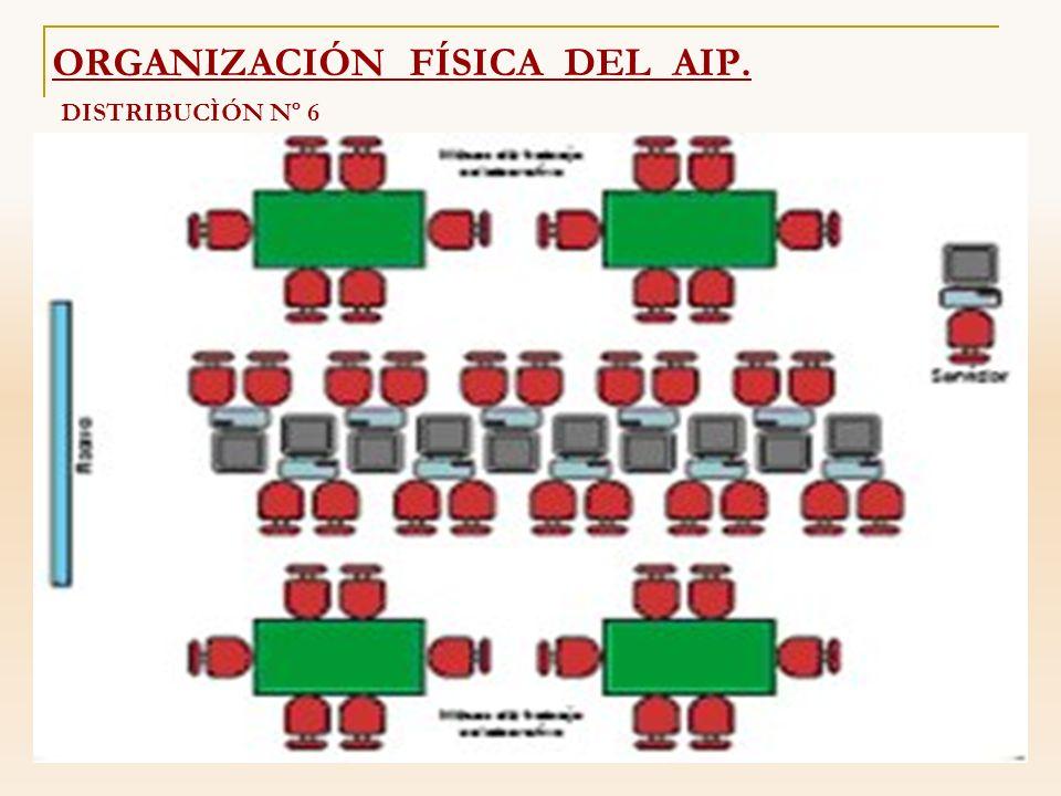 DISTRIBUCÌÓN Nº 6 ORGANIZACIÓN FÍSICA DEL AIP.
