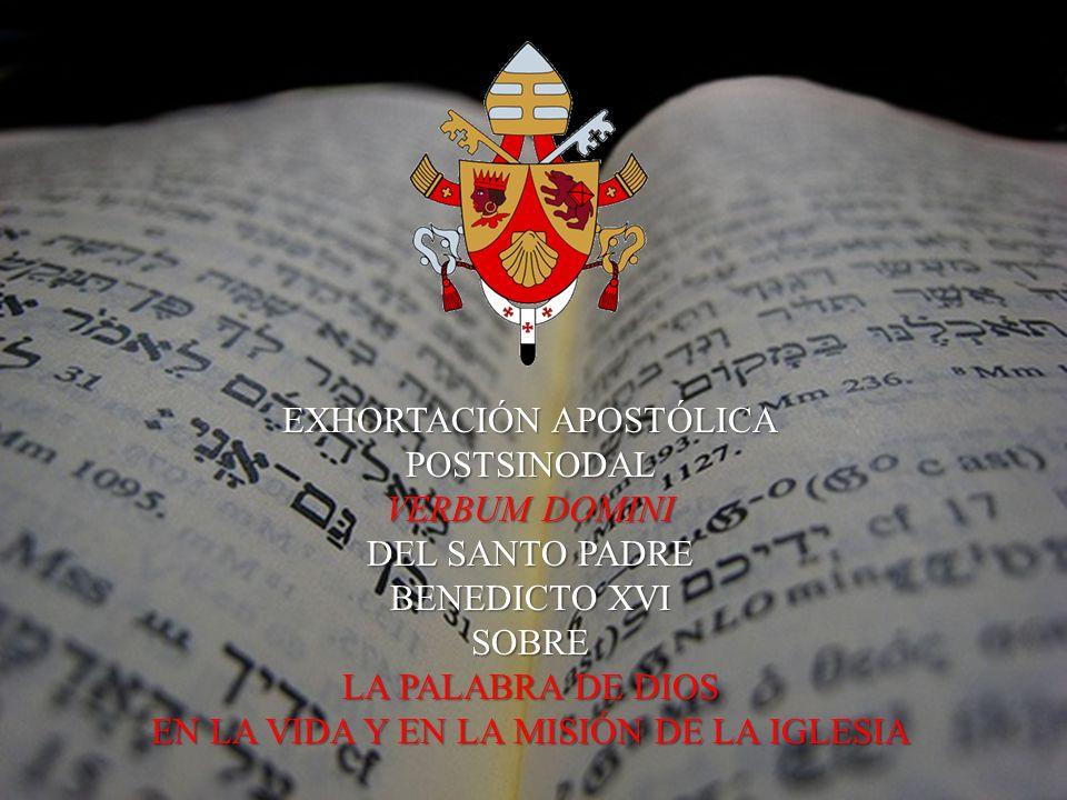 LA ANIMACIÓN BÍBLICA DE LA PASTORAL...