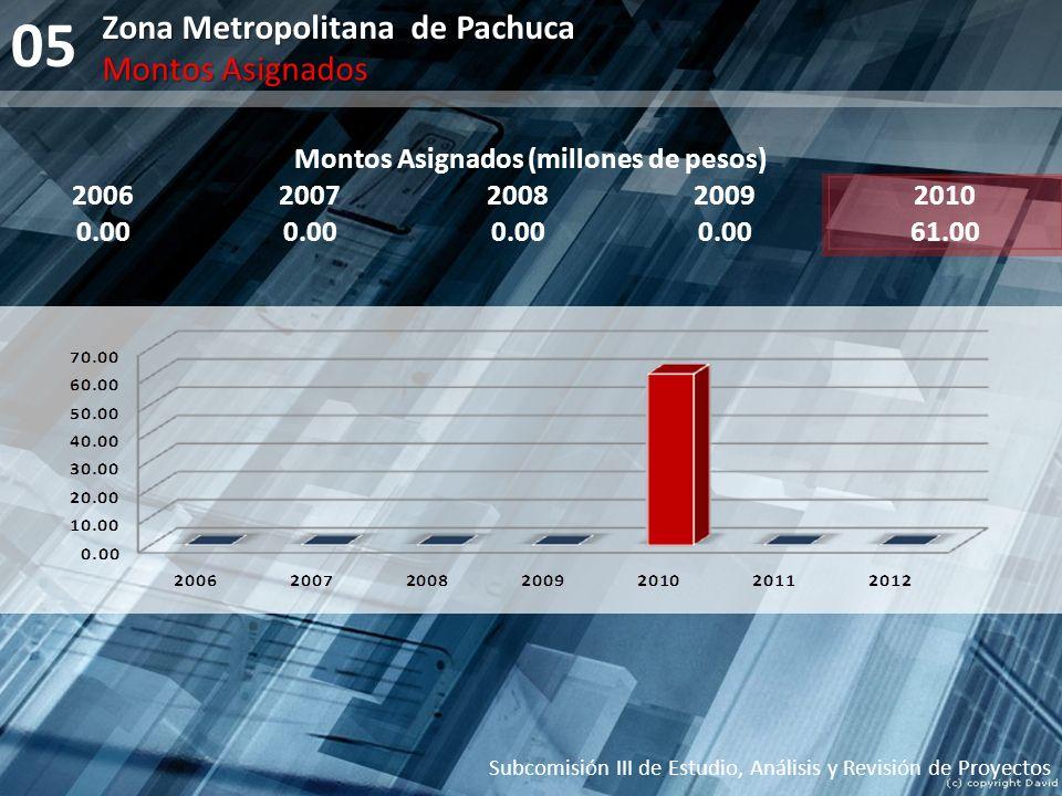 05 Zona Metropolitana de Pachuca Subcomisión III de Estudio, Análisis y Revisión de Proyectos Montos Asignados Montos Asignados (millones de pesos) 20