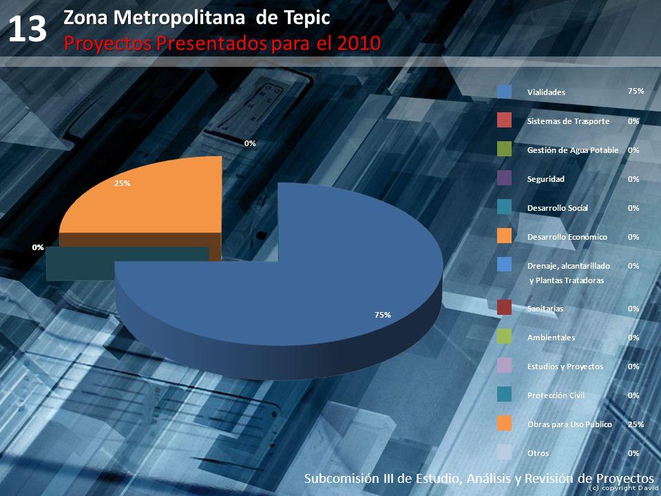 13 Subcomisión III de Estudio, Análisis y Revisión de Proyectos Zona Metropolitana de Tepic Proyectos Presentados para el 2010