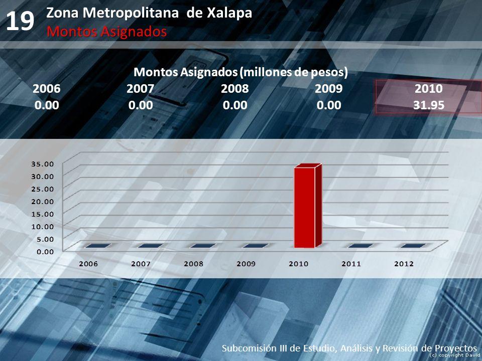 19 Montos Asignados (millones de pesos) 20062007200820092010 0.00 31.95 Subcomisión III de Estudio, Análisis y Revisión de Proyectos Zona Metropolitan