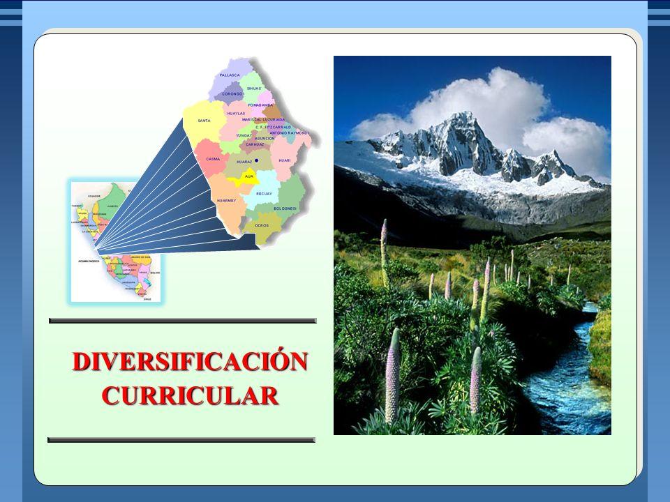DEFINIR EL CALENDARIO ESCOLAR EN FUNCIÓN DE LAS CARACTERÍSTICAS GEOGRÁFICAS, CLIMÁTICAS, CULTURALES Y PRODUCTIVAS DESARROLLAR FORMAS DE GESTIÓN, ORGANIZACIÓN ESCOLAR Y HORARIOS DIFERENCIADOS SEGÚN LAS CARACTERÍSTICAS DEL MEDIO Y LA POBLACIÓN ATENDIDA.