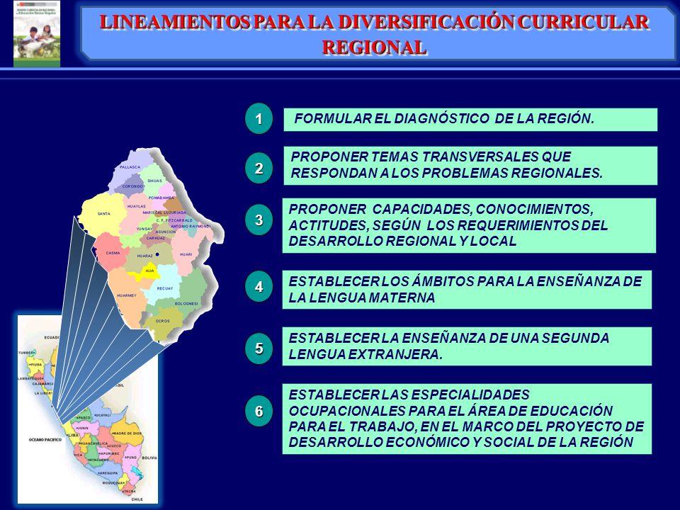 FORMULAR EL DIAGNÓSTICO DE LA REGIÓN. PROPONER CAPACIDADES, CONOCIMIENTOS, ACTITUDES, SEGÚN LOS REQUERIMIENTOS DEL DESARROLLO REGIONAL Y LOCAL ESTABLE