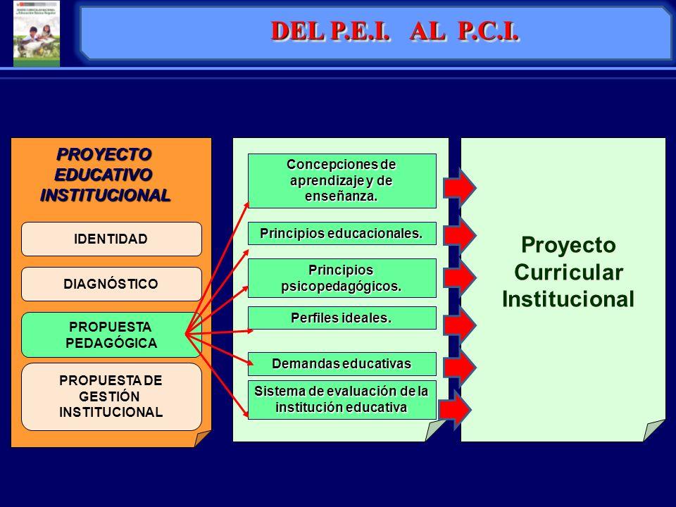 IDENTIDAD PROYECTOEDUCATIVOINSTITUCIONAL DIAGNÓSTICO PROPUESTA PEDAGÓGICA PROPUESTA DE GESTIÓN INSTITUCIONAL Concepciones de aprendizaje y de enseñanz