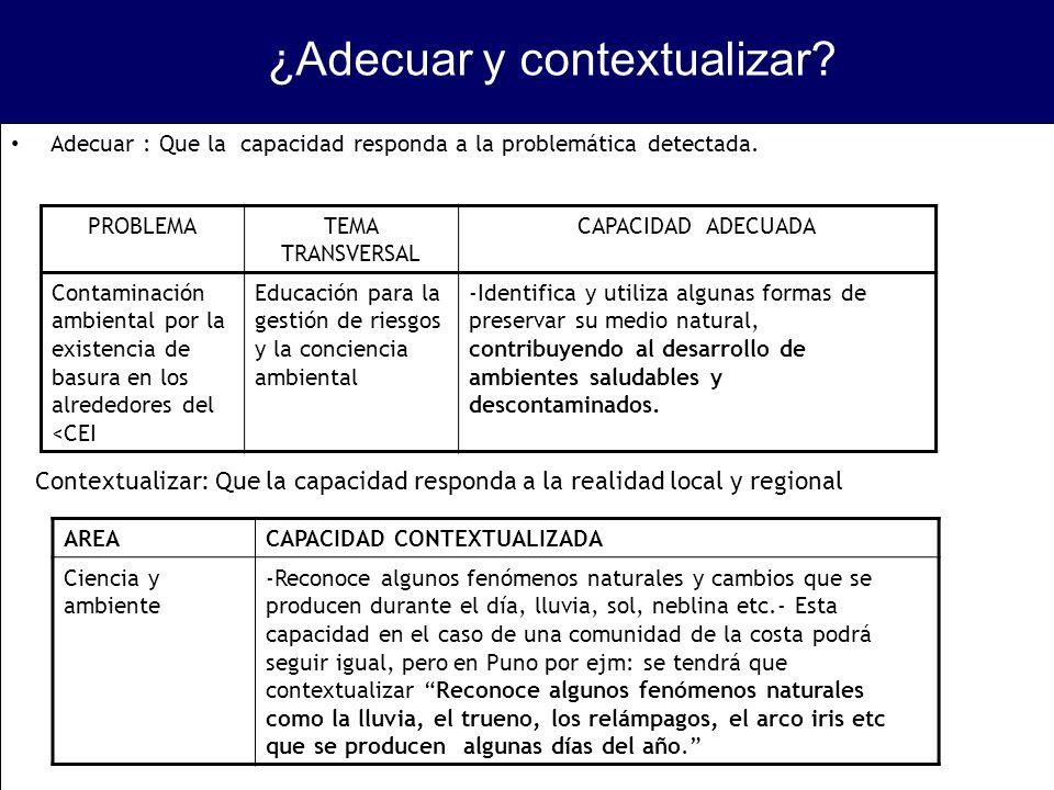 Adecuar : Que la capacidad responda a la problemática detectada. PROBLEMATEMA TRANSVERSAL CAPACIDAD ADECUADA Contaminación ambiental por la existencia